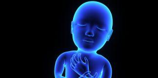 oral health begins in utero